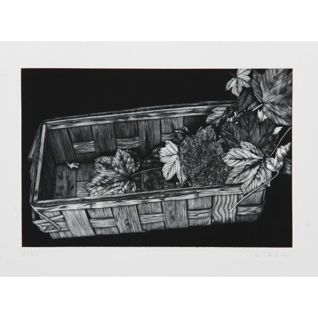 Artist: Gerde Ebert, German (1947 - ) Title: Basket of Leaves Year: 1976 Medium: Mezzotint, signed and numbered in pencil...