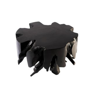 Organic Modern Small Black Round Teak Root Coffee Table For Sale