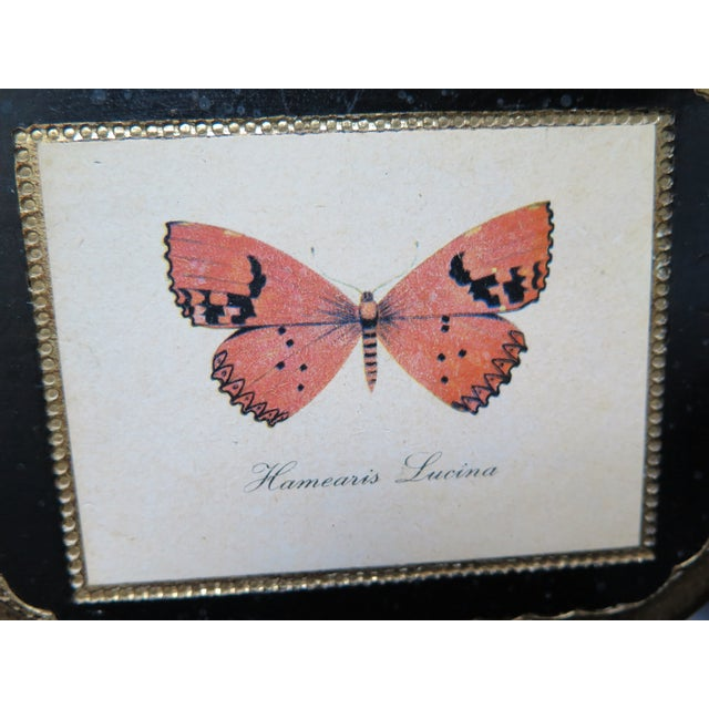 Butterfly Plaque Hanging Decopage Style For Sale - Image 10 of 12