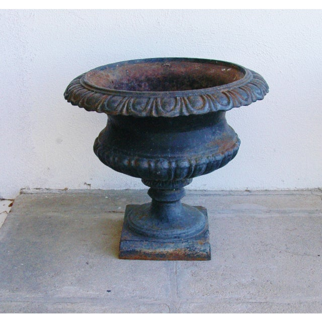 Early 19th-C. Cast Iron Urn Planters - Pair - Image 11 of 11