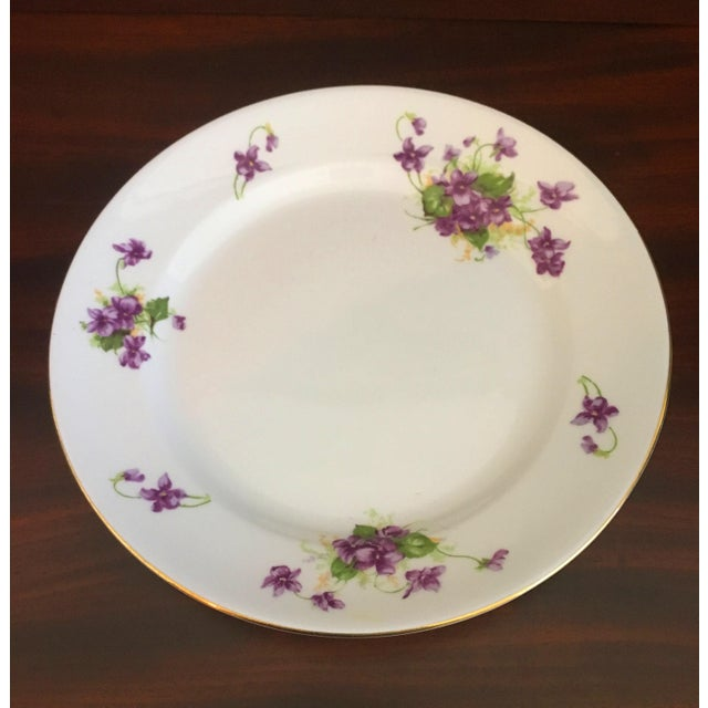 English 1950s Violet Floral Bone China Luncheon Plates - Set of 9 For Sale - Image 3 of 13
