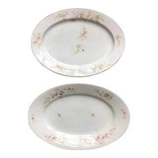 1920s Antique Bavarian Floral Platters - a Pair For Sale