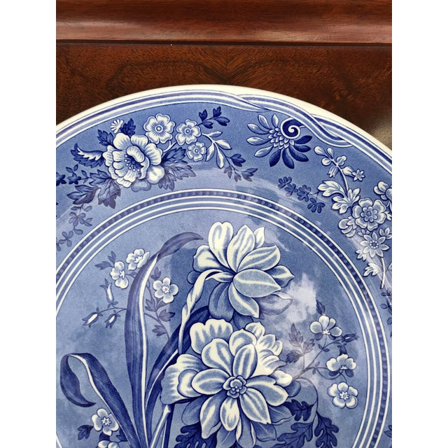 English Large Spode Blue Room Collection Botanical Plate/Platter For Sale - Image 3 of 7
