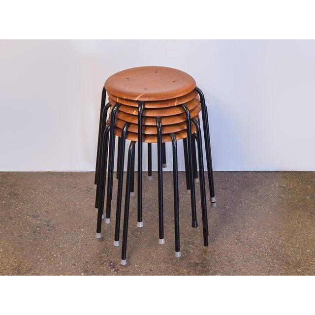 1950s Vintage Arne Jacobsen Dot Stools - Set of 6 For Sale - Image 9 of 9