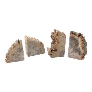Petrified Wood Book Ends - Set of 4