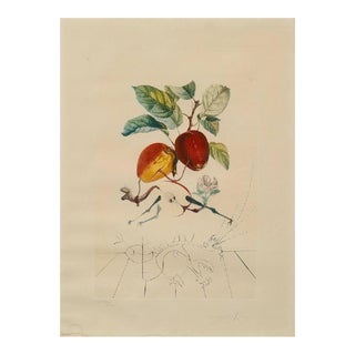 Photolithography FlorDali / Les Fruits by Salvador Dali, 1968 For Sale