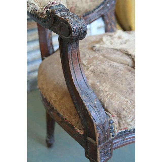 Louis XVI Style Armchair - Image 2 of 9