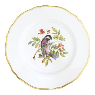 "Spode Signed A. Wallis ""Chestnut Backed Chickadee"" Bird Plate W/ Gold Band For Sale"