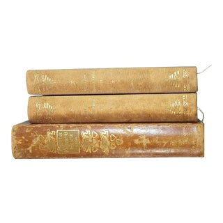 Antique Danish Leather Books, Set of 3 For Sale