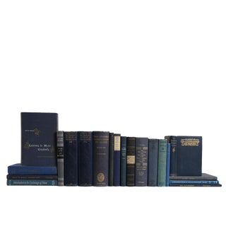 Vintage Blue Music Appreciation Book Set, S/20 For Sale