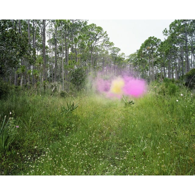 Contemporary Jeremy Chandler, Smokescreen for the Southern Summer, 2014 For Sale - Image 3 of 3