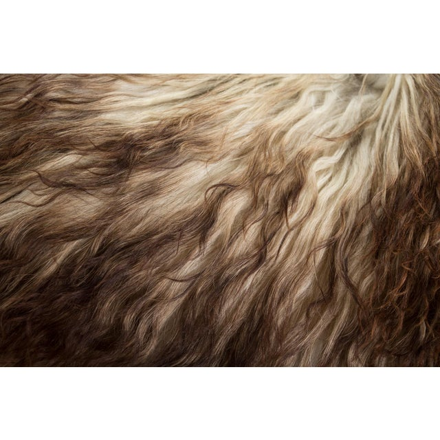 """2010s Contemporary Hand-Tanned Sheepskin Pelt Rug - 2'4""""x4'0"""" For Sale - Image 5 of 6"""