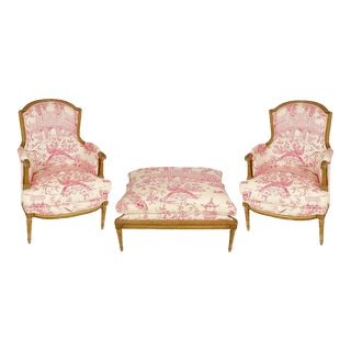 Pair of Louis XVI Style Bergères with Ottoman For Sale