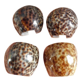 Vintage Tiger Cowrie 1970s Shell Napkin Rings - Set of 4 For Sale