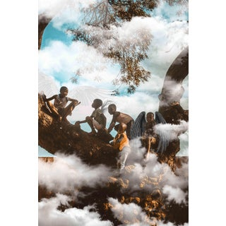 "Contemporary Photography ""The Wisdom Tree"" by Douglas Condzo"