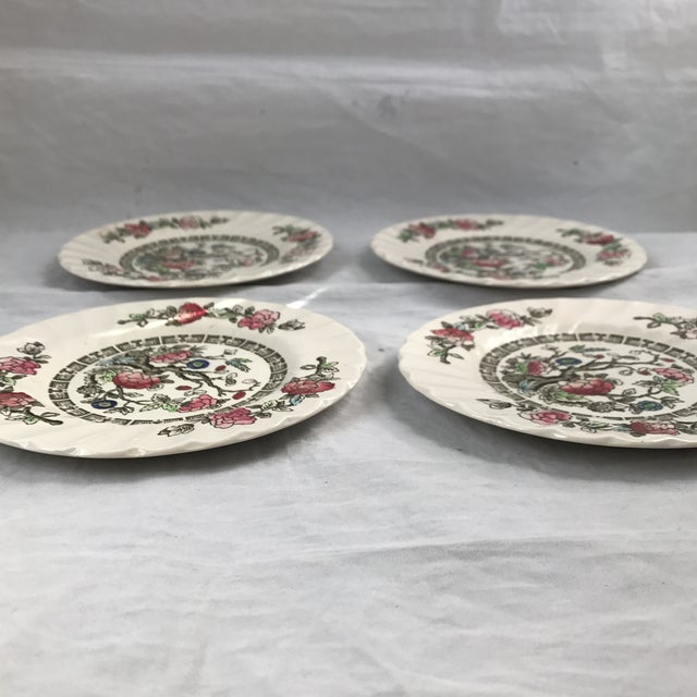 Myott English Staffordshire Bread & Butter Plates - Set of 4 - Image 5 of 5