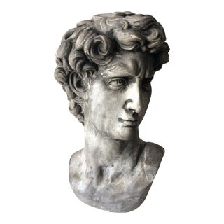 Bust of Michelangelo's David Sculpture For Sale