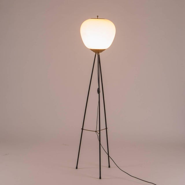 Mid-Century Modern Stilnovo Floor Lamp For Sale - Image 3 of 8