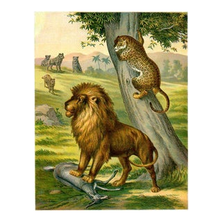 Lion and Jaguar, 1886 Print For Sale