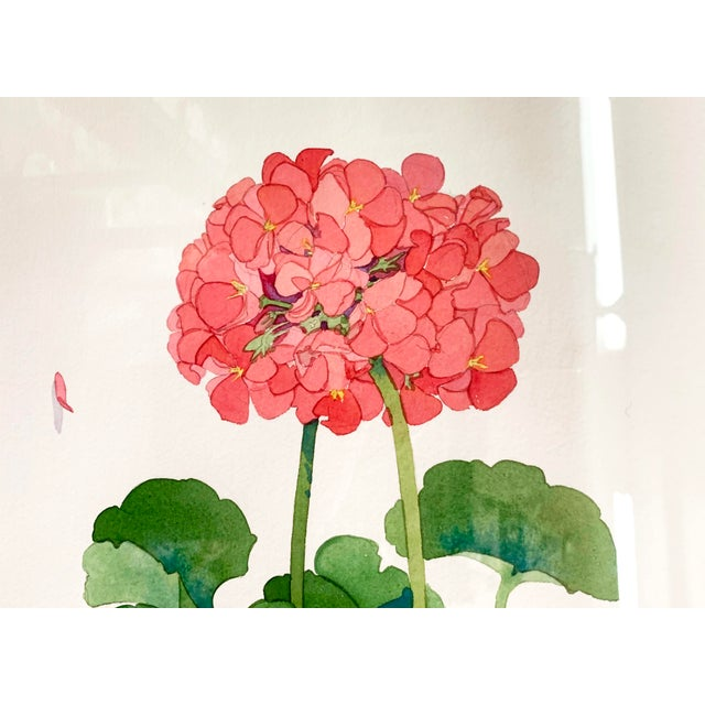 American Large Framed Watercolor of Pink and Red Potted Geraniums by Gary Bukovnik For Sale - Image 3 of 13