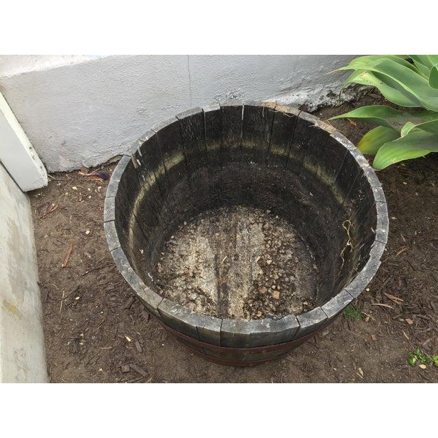 Oak Wine Barrel Half-Barrel Planter - Image 4 of 4