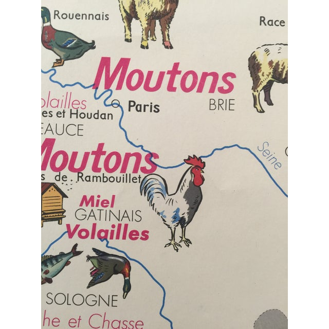 Wonderful and very rare mid century poster they used in France to teach pupils about how and where regional secondary...