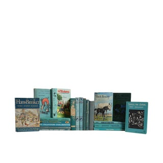 Kids' Turquoise Stories : Set of Twenty Decorative Books For Sale