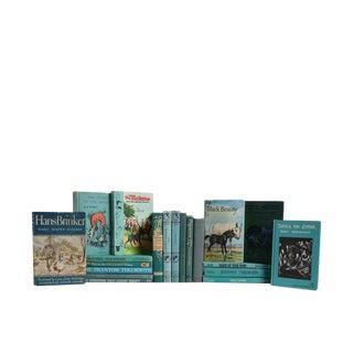 Kids' Turquoise Stories : Set of Twenty Decorative Books
