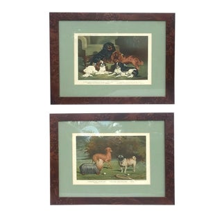 Late 19th Century Antique Cassell Framed Dog Lithograph Prints Art - a Pair For Sale