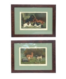 Image of Auburn Original Prints