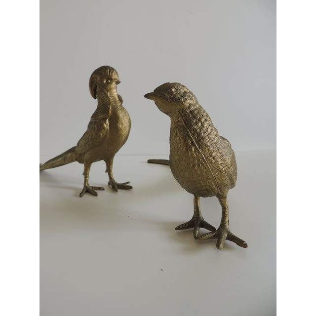 Pair of Brass-Plated Standing Male and Female Pheasants For Sale - Image 4 of 6
