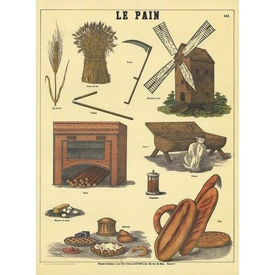 "Deyrolle ""Le Pain"" Poster For Sale"