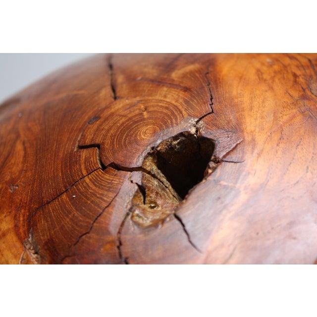 Midcentury Redwood Burl Sphere Sculpture For Sale - Image 11 of 13