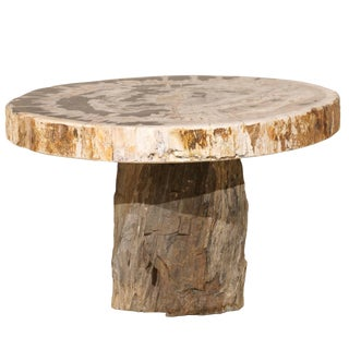 Petrified Wood Coffee Table With Round Top and Beige and Black Colors For Sale