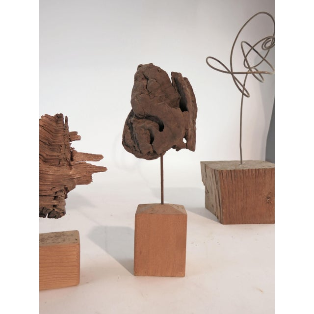 Collection of Abstract Driftwood Sculptures, Gloucester, Ma, Circa 1960s-1970s - Set of 9 For Sale - Image 4 of 13