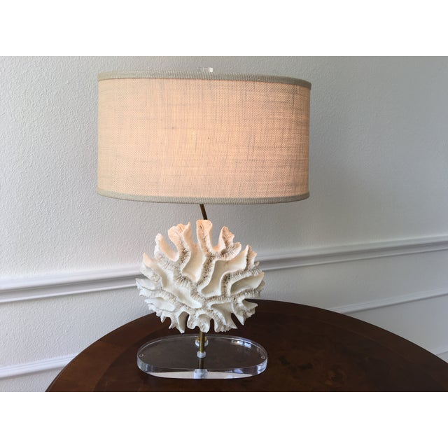 Brass Natural Coral Lamps - Pair For Sale - Image 7 of 9