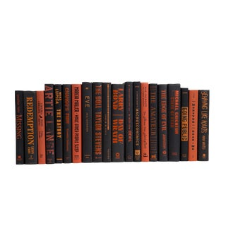 Auburn & Onyx Book Set, (S/20) For Sale