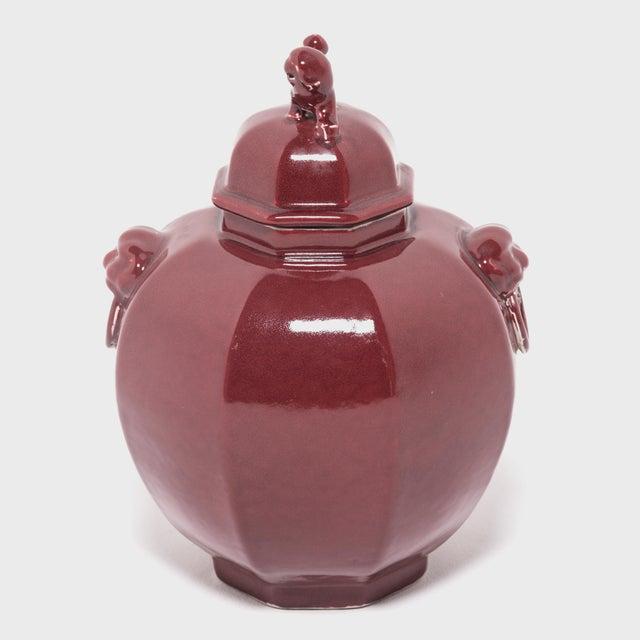 Asian Pair of Shizi Hong Ginger Jars For Sale - Image 3 of 8