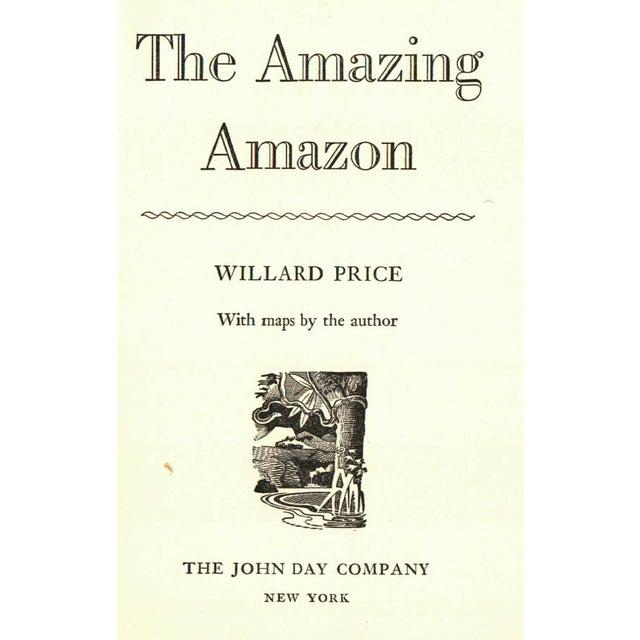 The Amazing Amazon For Sale - Image 4 of 5