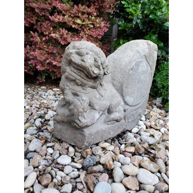 Antique Chinese Buddhist Temple Architectural Foo Lion Statual For Sale In Austin - Image 6 of 11