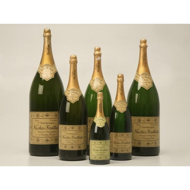 Set of 6 Nicolas Feuillatte Champagne Bottle Store Props - Image 2 of 10