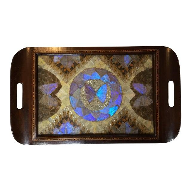 Brazilian Butterfly Wood Tray For Sale