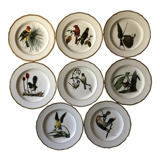 1970s Spode American Songbird Plates, Ray Harm - Set of 8 For Sale