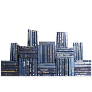 Modern Navy Book Wall, S/75 For Sale