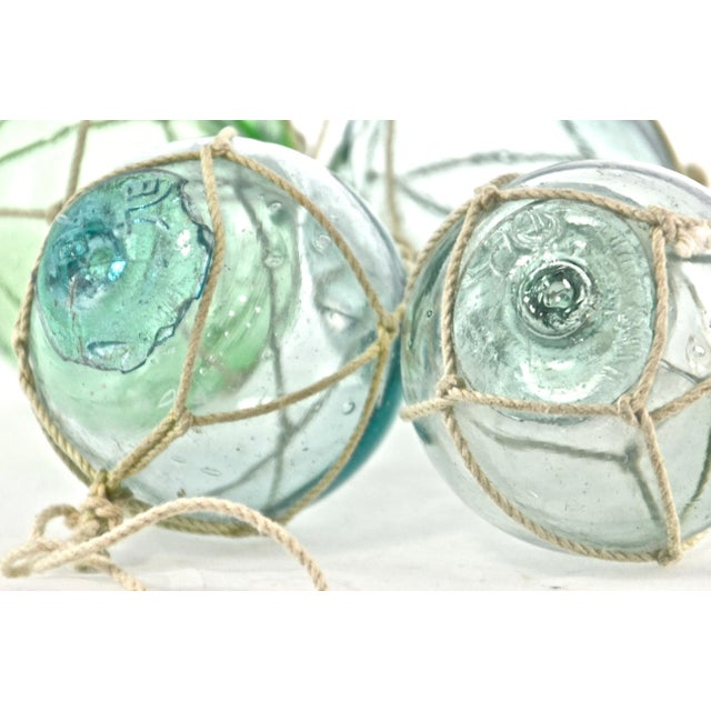 Aqua Japanese Blown Glass Net Floats- Set of 4 - Image 4 of 5