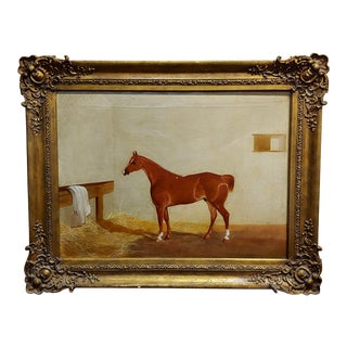19th Century Race Horse in a Stall -English Oil Painting -C1860s For Sale