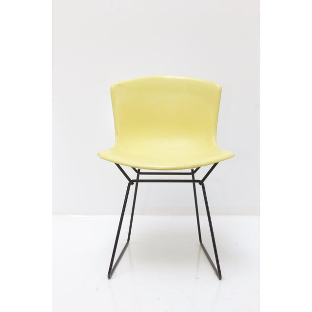An original Knoll Bertoia fiberglass side chair. The fiberglass seat is a bright yellow with a black base. The bottom of...