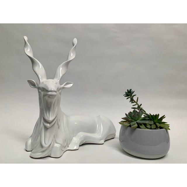 1980s FInal Markdown Italian Porcelain Oversized White Sitting Spiral Horned Antelope Figure For Sale - Image 5 of 11