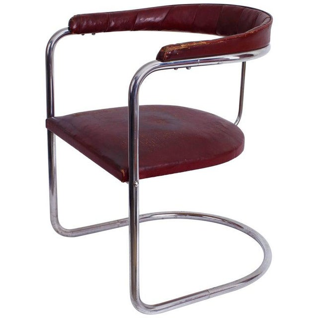 Metal 1930s Vintage Anton Lorenz for Thonet Cantilevered Steel Tube Ss33 Chair For Sale - Image 7 of 7