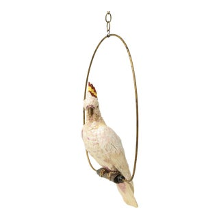 Late 19th Century Continental Porcelain Model of Major Mitchells Cockatoo With Ring For Sale